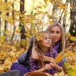 Happy mum and the daughter play autumn park on the fallen down foliage — Stock Photo #29773199