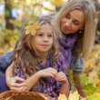 Happy mum and the daughter play autumn park on the fallen down foliage — Stock Photo #29773301