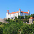 Medieval castle on the hill against the sky, Bratislava, Slovakia — Stock Photo #29773315