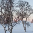 Winter trees against the Solovki monastery, Russia — Stock Photo