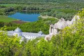 Yaz aylarında Divnogorsky kutsal Uspensky adamın Manastırı — Stok fotoğraf