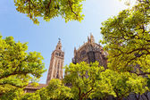 Cathedral and GIralda Tower — Stock Photo