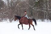 Woman in the brown riding habit — Stok fotoğraf