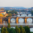 View of the Vltava River and the bridges shined with the sunset sun, Prague, the Czech Republic — Stock Photo