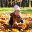 girl sits among the leaves — Stockfoto