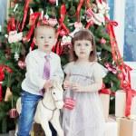 Small boy and the girl play near a beautiful Christmas fir-tree — Stock Photo