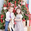 Boy and the girl play near a Christmas fir-tree — Stock Photo