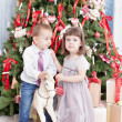 Boy and the girl play near a Christmas fir-tree — Stock Photo #35601081