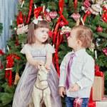 Boy and the girl and Christmas tree — Stock Photo