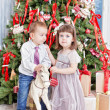 Spar-kerstboom — Stockfoto #36977739