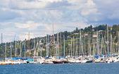 ジュネーブ湖 — ストック写真