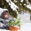 Little girl in a winter wood with the big basket of snowdrops — Stock Photo #37389459