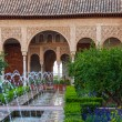Stock Photo: Gardens of the Generalife in Spain, part of the Alhambra