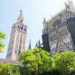 Cathedral and GIralda Tower, Seville, Spain — Stock Photo #37389563