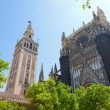 Cathedral and GIralda Tower, Seville, Spain — Stock Photo #40076313