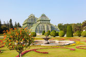 Front side of palm house in Schonbrunn Garden in Vienna — Stockfoto