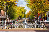 Parking of bicycles on the bank of the channel in Delft — Stock Photo