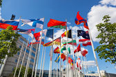 Flags of the different countries on flagstaffs — Stock Photo