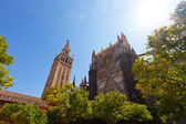 Cathedral and GIralda Tower, Seville, Spain — Stock Photo