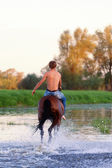 Rider with a naked torso skips astride a horse — Stock Photo