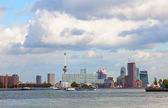 Rotterdam port View — Foto Stock