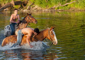 Men astride horses — Stock Photo