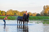 Men bathe horses in the river — Stock Photo