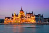 Building of the Hungarian parliament — Stock Photo