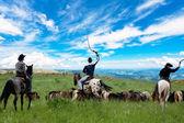 Cowboys drive herd of horses — Stock Photo