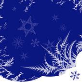 Ornement d'hiver — Vecteur
