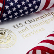 U.S. Department of Homeland Security Logo - Stock Photo