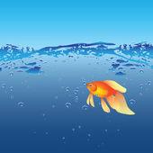 Goldfish — Wektor stockowy