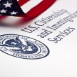 U.S. Department of Homeland Security Logo — Stock Photo #13302653