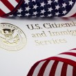 U.S. Department of Homeland Security Logo — Stock Photo #13907130