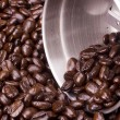 Coffee beans — Photo