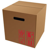 Imballo in cartone con simboli — Vettoriale Stock