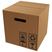 Kartonverpackung mit symbolen — Stockvektor