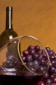 Glass of red wine — Stockfoto