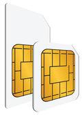 Regular and mini SIM cards — Stock Vector
