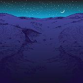 Night desert — Stock Vector