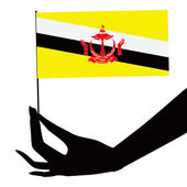 Brunei flag in his hand — Stock Vector