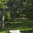 图库照片: Bench in city park. City of Toronto. Canada.