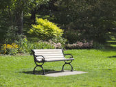 Bench in a city park. City of Toronto. Canada. — Zdjęcie stockowe