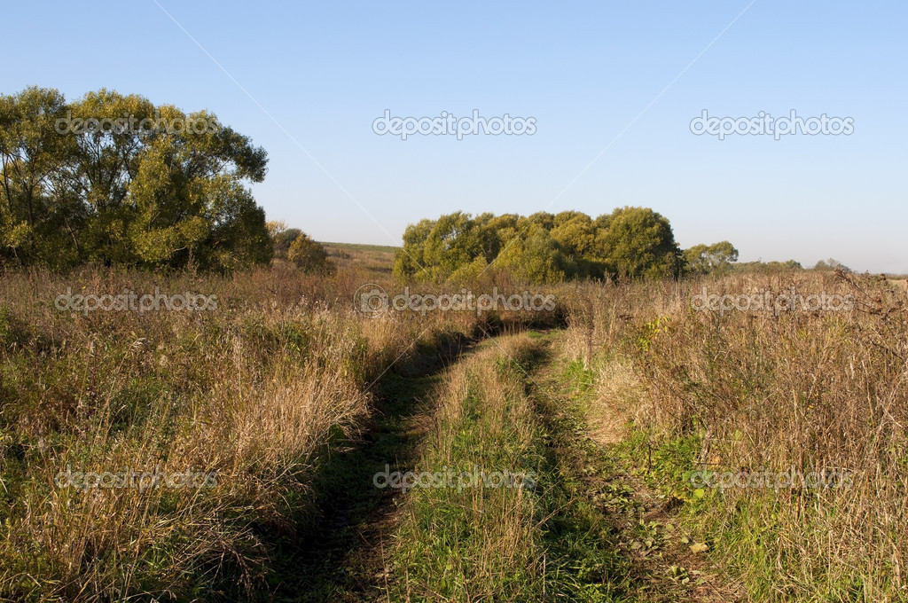 Country dirt road in autumn field on sunny morning — Stock Photo #13167213