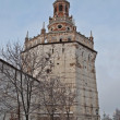 Duck tower in Holy Trinity Sergius Lavra - Stock Photo