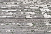 Vintage wood background — Foto Stock