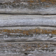 Old log walls texture — Stock Photo