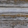 Old log walls texture — Stock Photo #23541187
