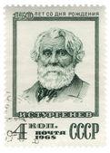 Russian writer Ivan Turgenev — Stock Photo