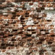 Old destroyed brick wall texture — Stock Photo #29106819